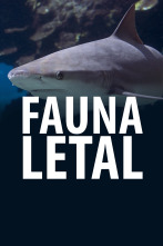 Fauna letal