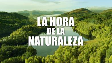 La hora de la naturaleza