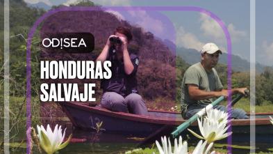 Honduras salvaje