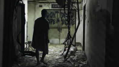 The Walking Dead - Los días transcurridos