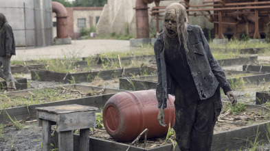 The Walking Dead - Cicatrices