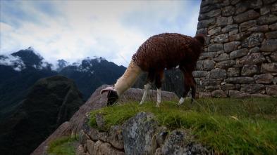 ¿Cómo lo haríamos hoy? - Machu Picchu
