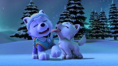 La Patrulla Canina - La patrulla salva a un lobo blanco / La patrulla salva a un explorador despistado