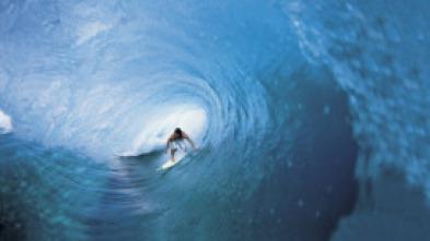 El zapping de Surferos