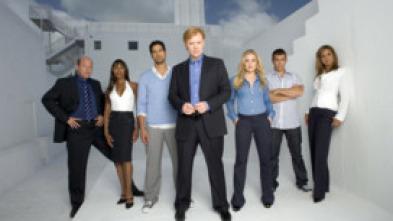 CSI: Miami - Un asesino pardo