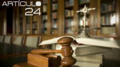 Artículo 24
