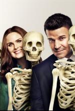 Bones - La profesora en los libros