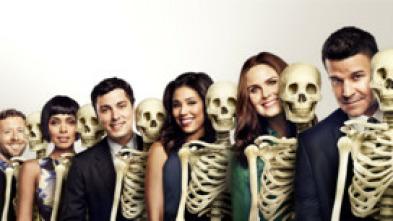 Bones - La vidente en la sopa
