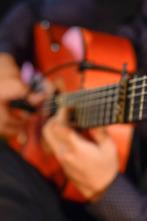 Flamenco Andalucía