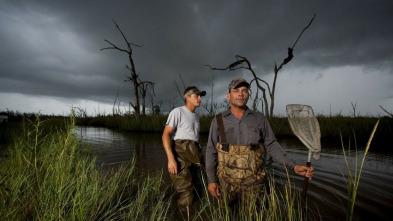 Cazadores del pantano - Explosión del pantano