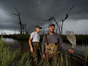 Cazadores del pantano - Equipo de etiquetas