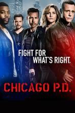 Chicago P.D. - Siete imputados