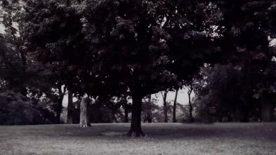 Asesinato en Central Park - ¿Quién es Robert Chambers?