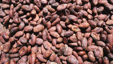 Así se hace - Patines de velocidad // Caucho sintético // Granos de cacao // Chocolate