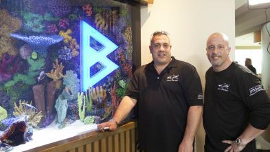Acuarios XXL - David Hasselhoff en el acuario