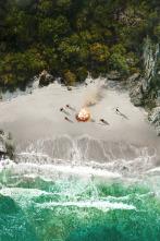 Aventura en pelotas XL - Adiós, mundo acuático cruel