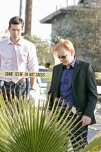 CSI: Miami - Avión a la vista