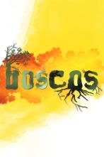 Boscos - Boscos de Pi Blanc (Montserrat)