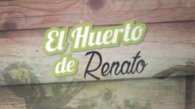 El huerto de Renato