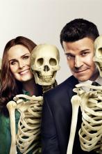 Bones - La gran bronca en la cafetería