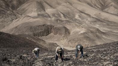 Las líneas de Nazca