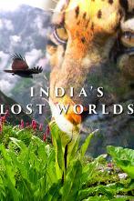 Los mundos perdidos de la India
