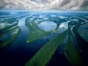 Amazonía - Paraíso depredador