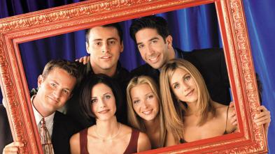 Friends - El del sandwich de Ross