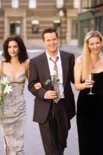 Friends - El de la boda de Mónica y Chandler (I)