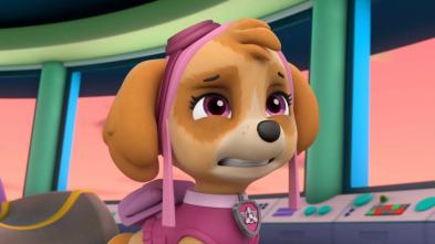 La patrulla canina Single Story - La patrulla salva un partido de baloncesto
