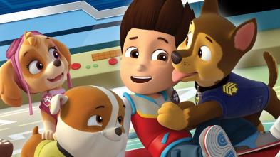 La patrulla canina Single Story - La patrulla salva un autobús escolar