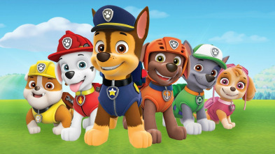 La patrulla canina Single Story - La patrulla salva una carrera de mini-autos