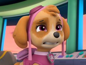 La patrulla canina Single Story - La patrulla salva la obra de teatro