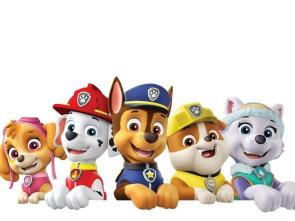 La patrulla canina Single Story - La patrulla salva la gran pata