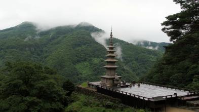 Corea del sur desde el cielo