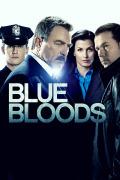 Blue Bloods (Familia de policías) | 8temporadas