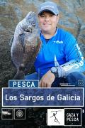 Los Sargos de Galicia