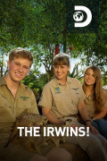 The Irwins | 1temporada