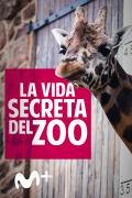 La vida secreta del Zoo | 3temporadas