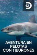 Aventura en pelotas  - Aventura en pelotas con tiburones