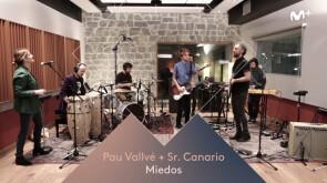 Menú Stereo - Pau Vallvé y Sr. Canario