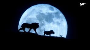 Gui en Hollywood: El rey león