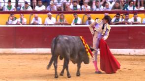 Feria de la Albahaca (11/08/2019)
