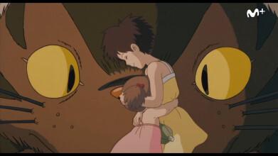 Hayao Miyazaki y el Estudio Ghibli: Tributo