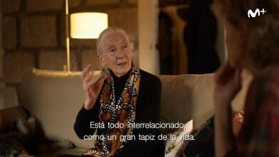 Scott y Milá: Jane Goodall | #0