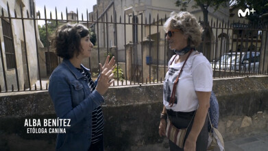 Scott y Milá: Alba Benítez | #0